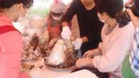 平成27年10月24・25日に津久見市で行われます「第33回ふるさと振興祭・第20回つくみ活き粋きフェア」にて 今年もまぐろの兜焼・まぐろ山椒鍋の無料配布を行います。 豪快に焼き上げられたまぐろの兜焼と、山椒の香るまぐろ山椒鍋はとても美味しく、毎年大変好評をいただいております。 どちらも約100食をご用意する予定です。 同日イベントでは他にもひじき飯やまぐろからあげ、ぎょろっけなど、津久見の美味しいものがたくさん出店されております。 またつくみんグッズやバザーなどのここでしか買えない掘り出し物もたくさんあります。 行楽の季節、是非一度お越しくださいませ! なお、今年は25日(日)のみの配布となります。 プログラム詳細は津久見市観光協会や津久見商工会議所HPなどで、あらかじめご確認ください。 (※画像は昨年のものです) 【日時】 10/25(日)11:00~ まぐろ山椒鍋無料配布         13:00~ まぐろ兜焼き無料配布 ※約100食をご用意しております。配布完了次第終了となります。 【場所】 つくみん公園 ステージ横特設会場にて